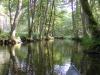 Ruhe über dem Fluss